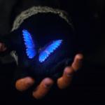 "Stranger Things Season 2, Chapter 7: ""The Lost Sister"" Recap"